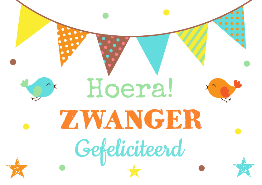 Felicitatiekaarten - Felicitatie zwangerschap slinger confetti