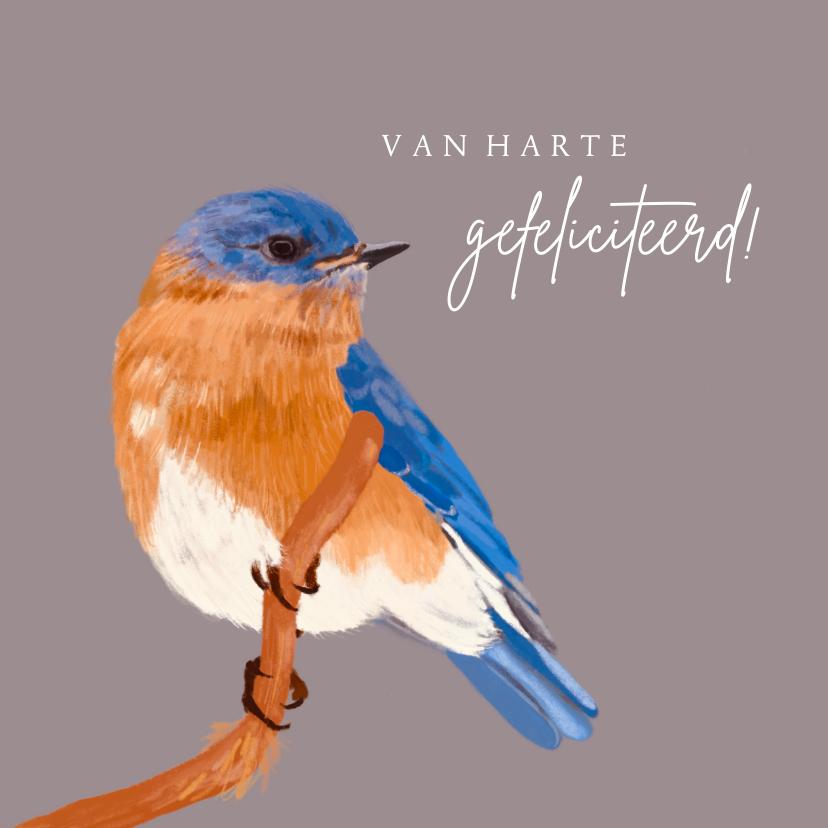 Felicitatiekaarten - Felicitatiekaart blauw oranje vogel