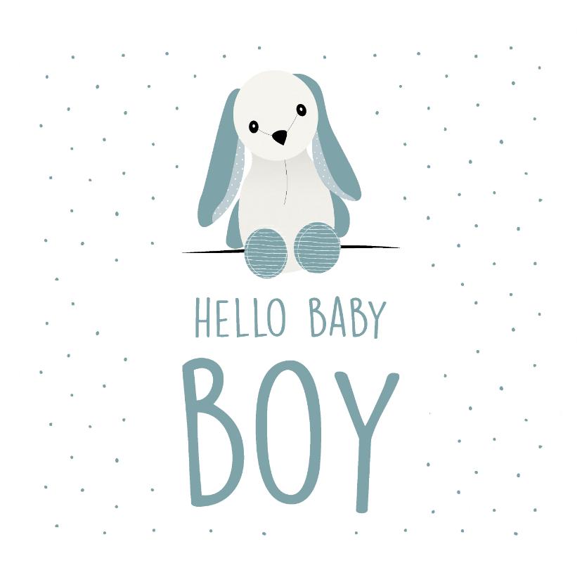Felicitatiekaarten - Felicitatiekaart geboorte jongen met lieve knuffel