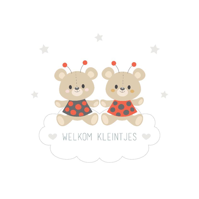 Felicitatiekaarten - Felicitatiekaart geboorte tweeling meisjes