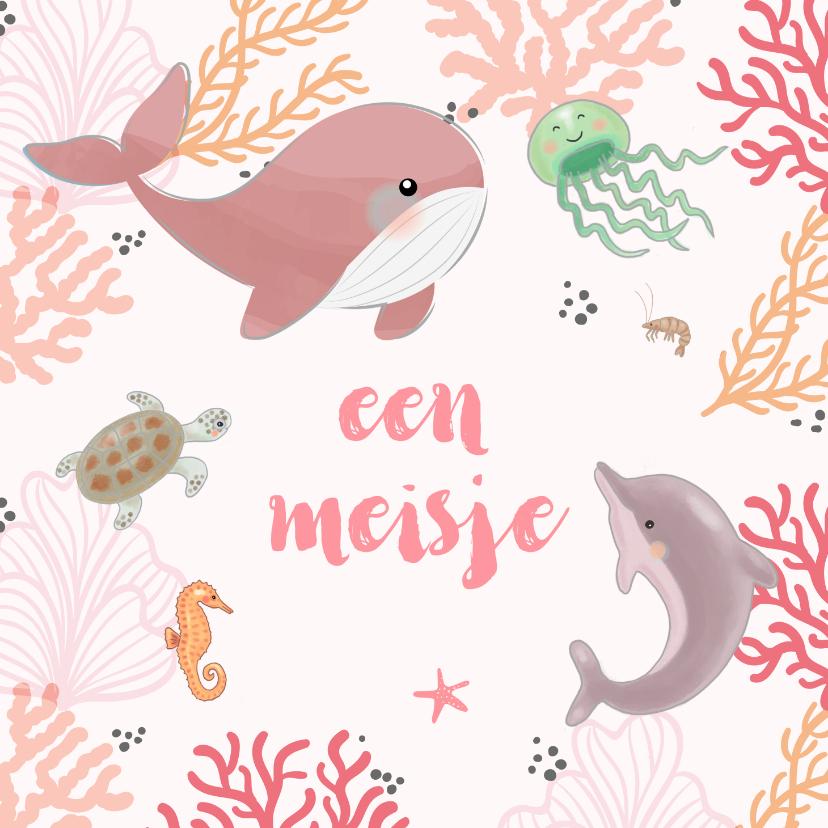 Felicitatiekaarten - Felicitatiekaart geboorte zeedieren koraal roze