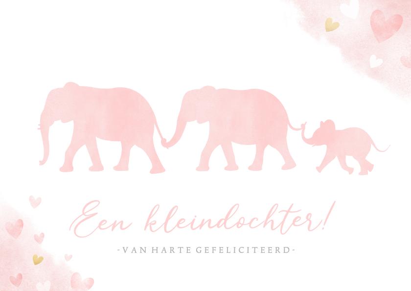 Felicitatiekaarten - Felicitatiekaart kleinkind met silhouet van 3 olifantjes