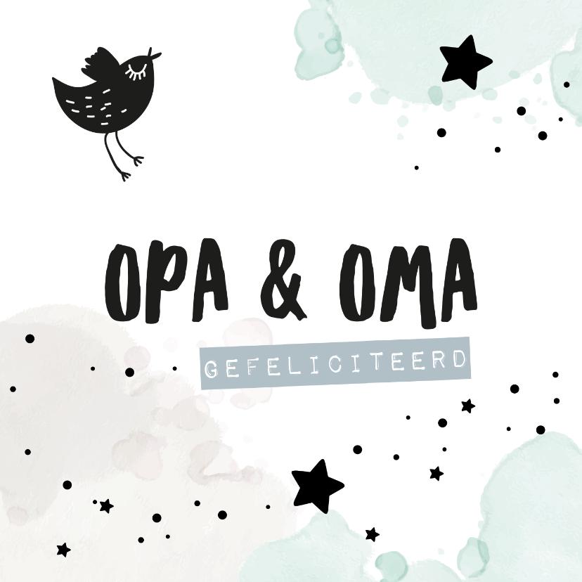Felicitatiekaarten - Felicitatiekaart kleinkind 'opa & oma'