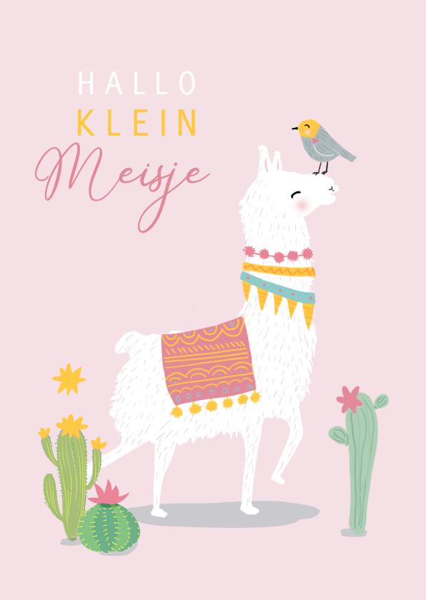 Felicitatiekaarten - Felicitatiekaart meisje witte lama