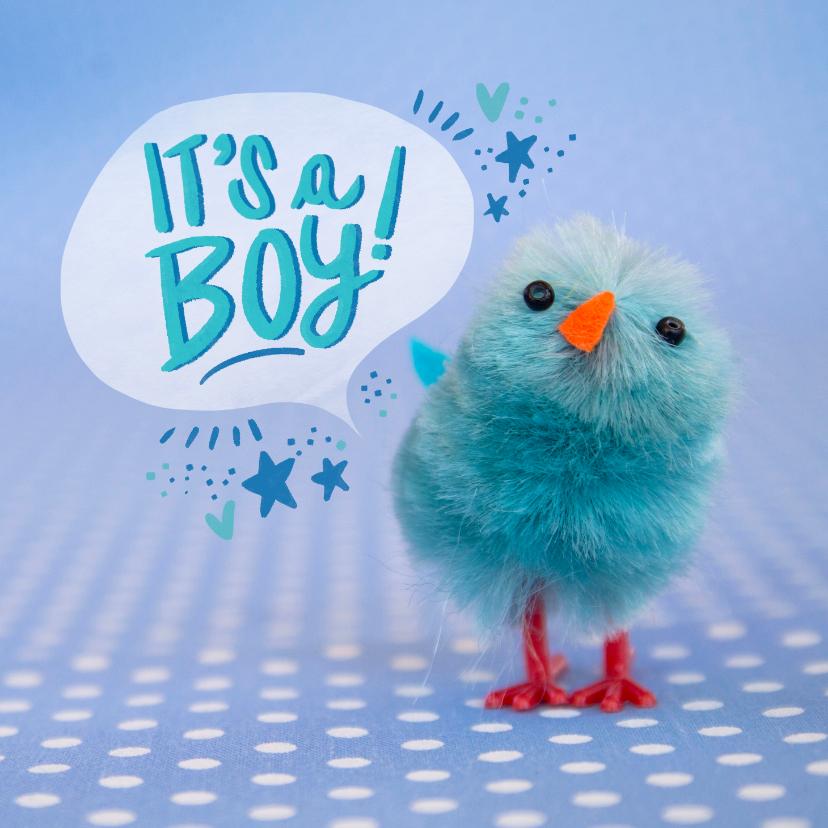 Felicitatiekaarten - Felicitatiekaart met blauw kuiken geboorte jongen