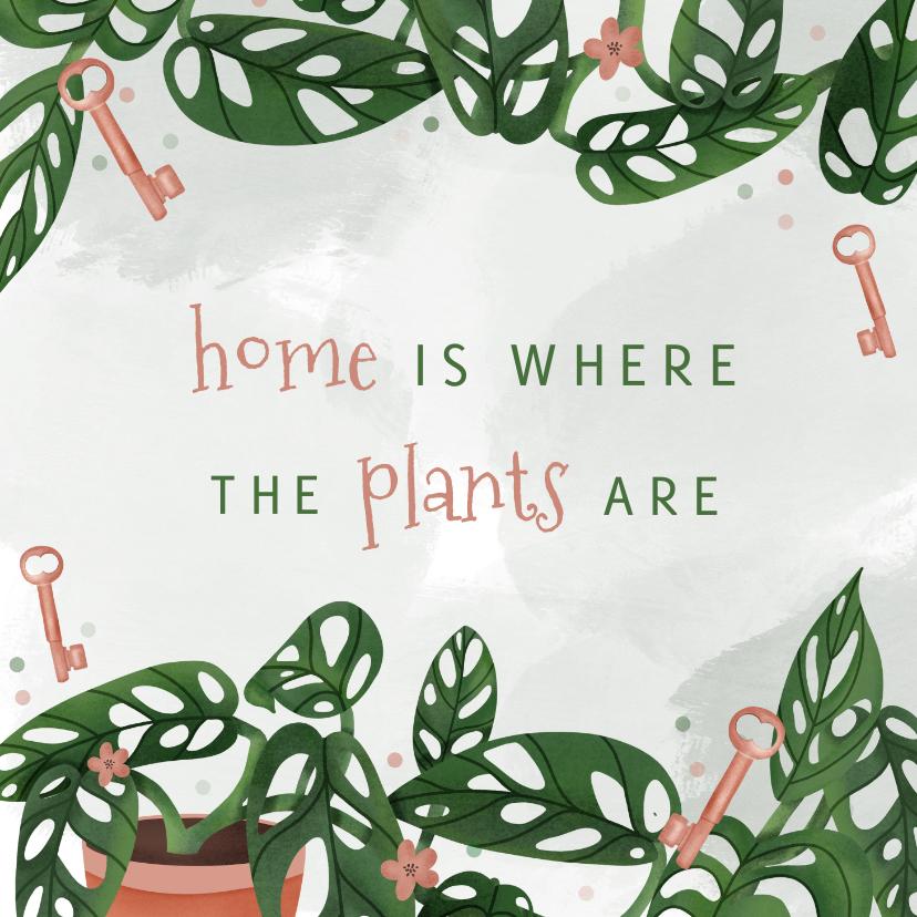 Felicitatiekaarten - Felicitatiekaart nieuwe woning met planten