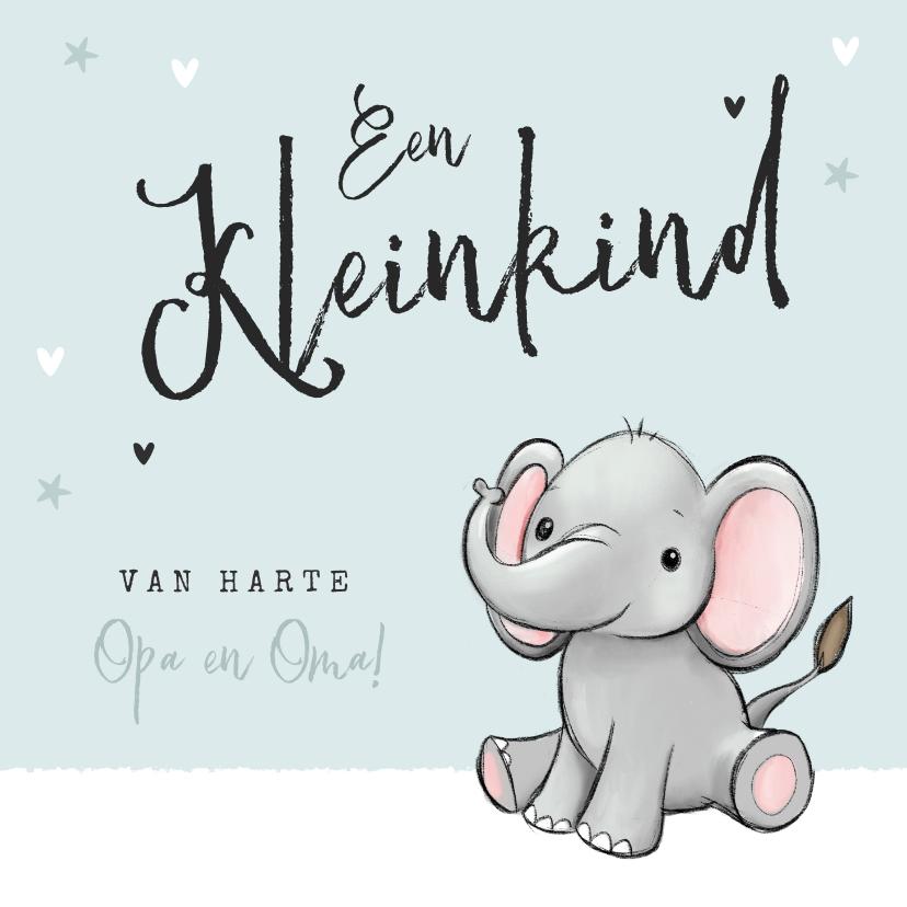 Felicitatiekaarten - Felicitatiekaart opa en oma kleinkind olifantje unisex