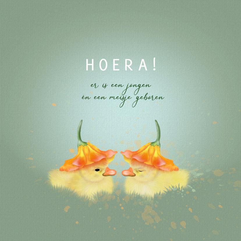 Felicitatiekaarten - Felicitatiekaart tweeling eendjes onder bloemkelk