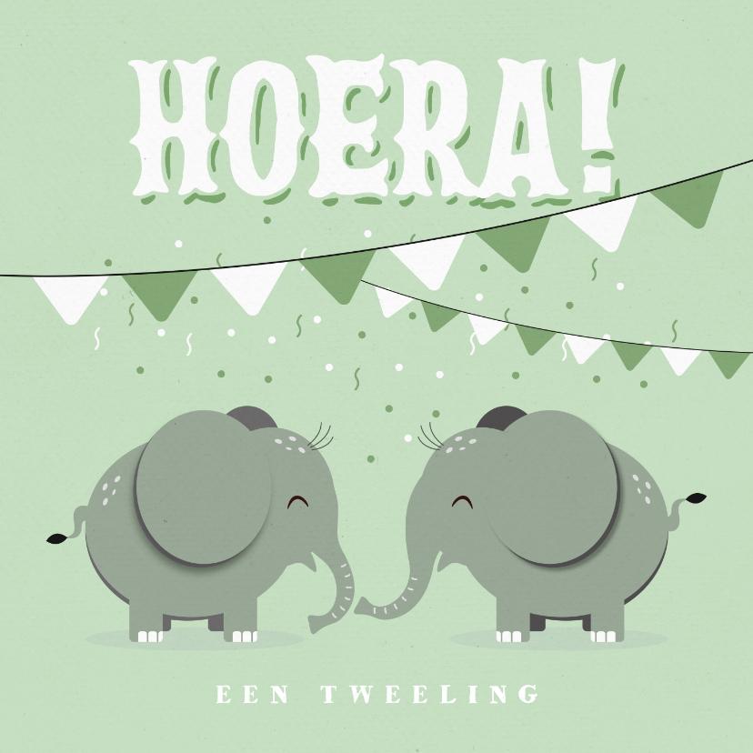 Felicitatiekaarten - Felicitatiekaart tweeling jongen meisje mintgroen olifantjes