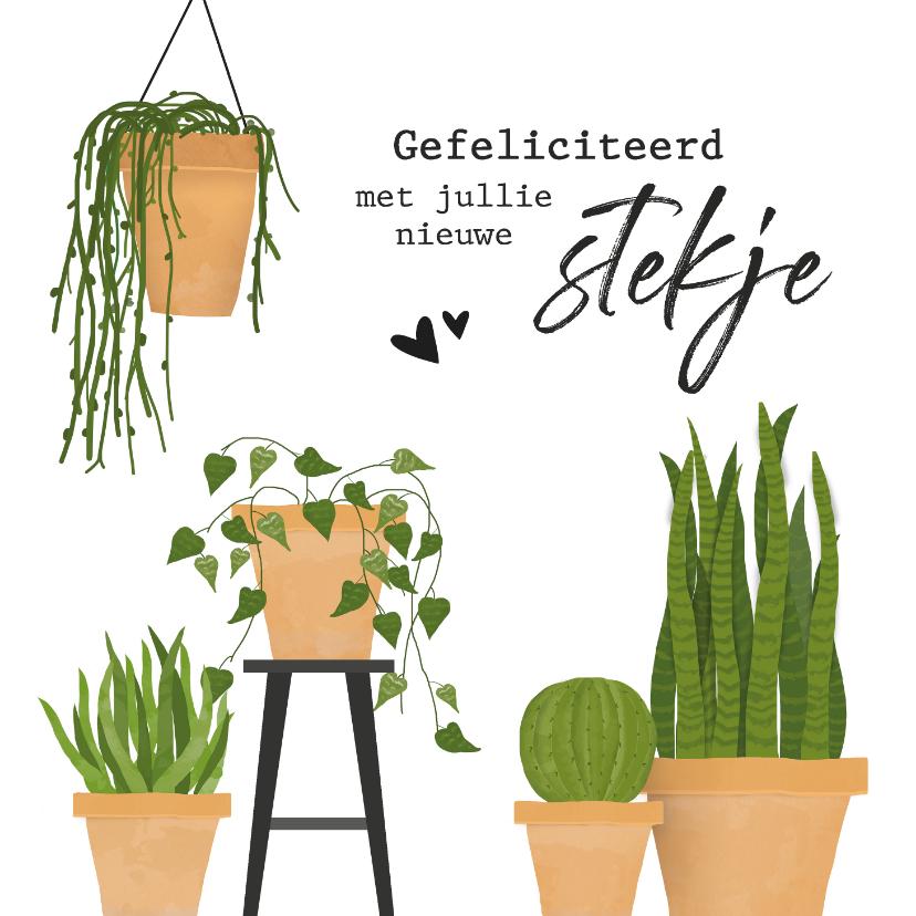 Felicitatiekaarten - Felicitatiekaart voor nieuwe woning met cactus / planten