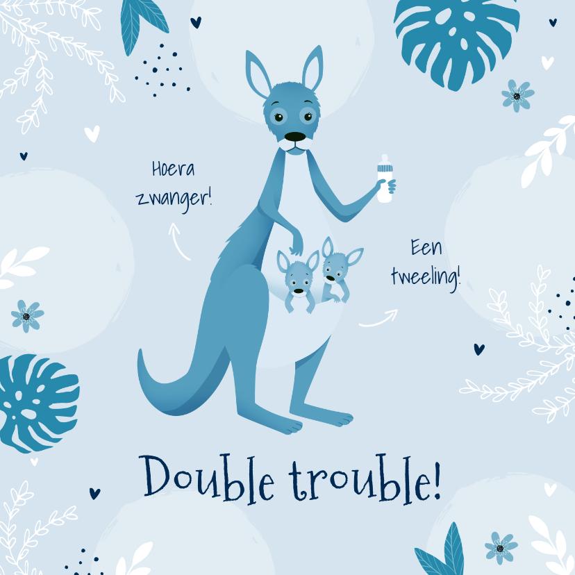 Felicitatiekaarten - Felicitatiekaart zwanger tweeling jongens kangoeroes