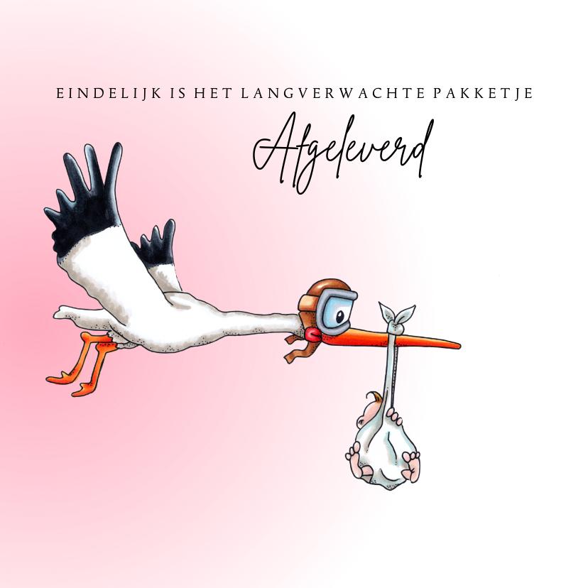 Felicitatiekaarten - Felicitatiekaarten vliegende ooievaar dochter geboren