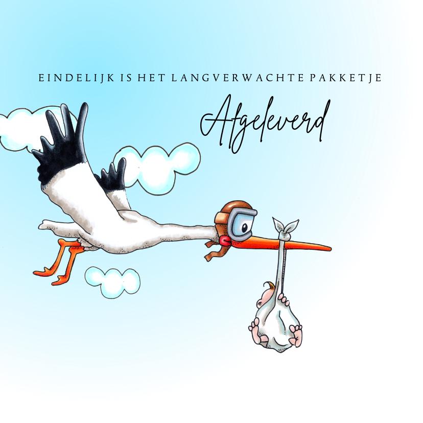 Felicitatiekaarten - Felicitatiekaarten vliegende ooievaar zoon geboren
