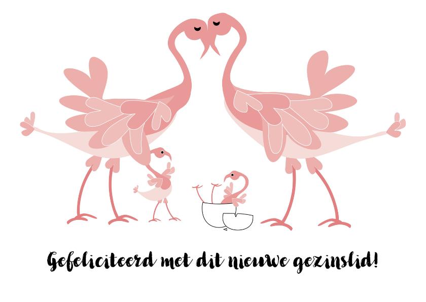 Felicitatiekaarten - Flamingo-geboorte broertje of zusje