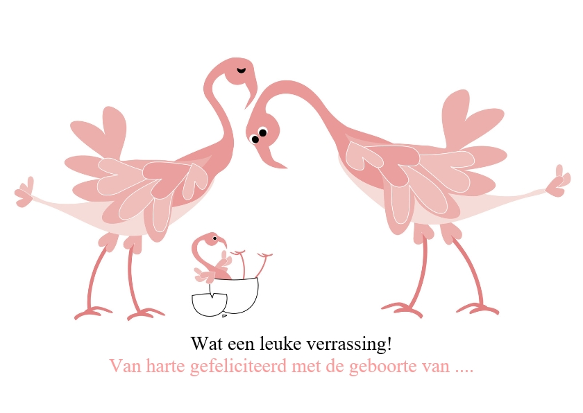Felicitatiekaarten - Flamingo geboorte onverwacht of vroeg