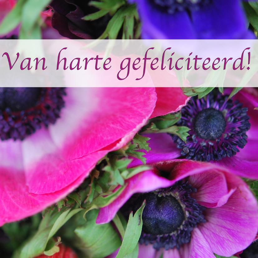 Felicitatiekaarten - Fotokaart bijzondere bloemen