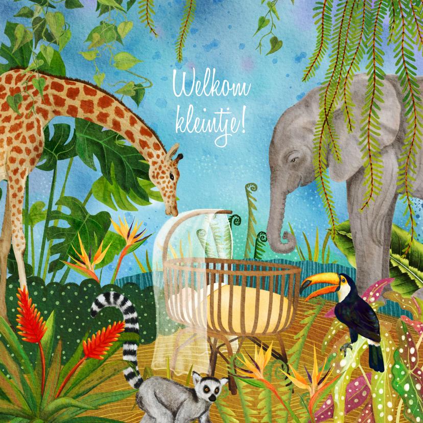 Felicitatiekaarten - Geboorte felicitatie kaart jungle dieren rond wiegje
