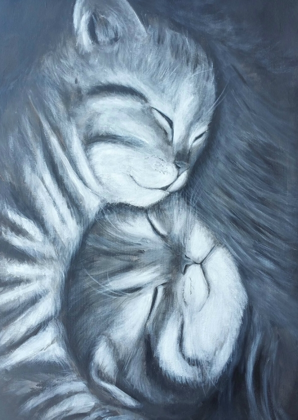 Felicitatiekaarten - geboorte van tweeling kat
