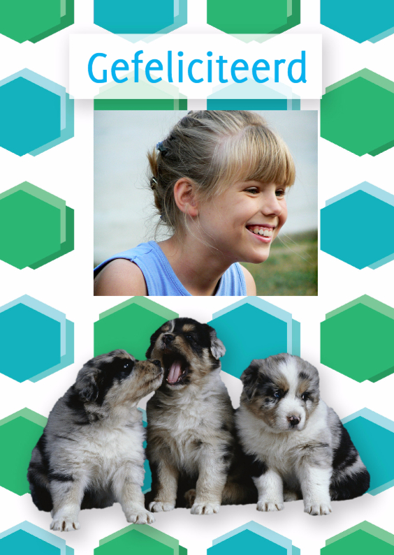 Felicitatiekaarten - Gefeliciteerd hondjes - Remco
