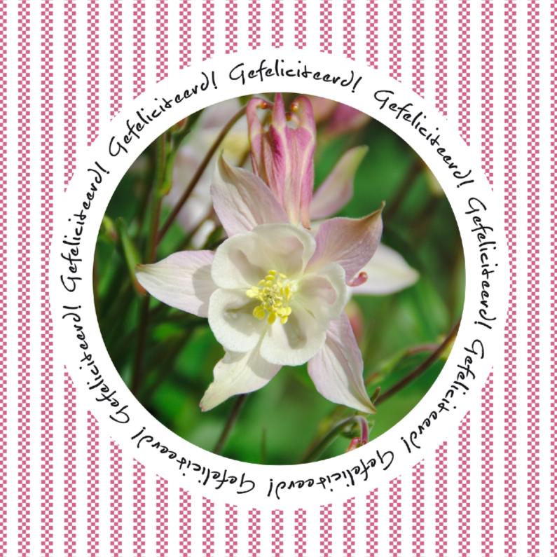 Felicitatiekaarten - Gefeliciteerd kaart bloem