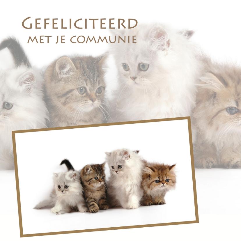 Felicitatiekaarten - Gefeliciteerd met je communie 4