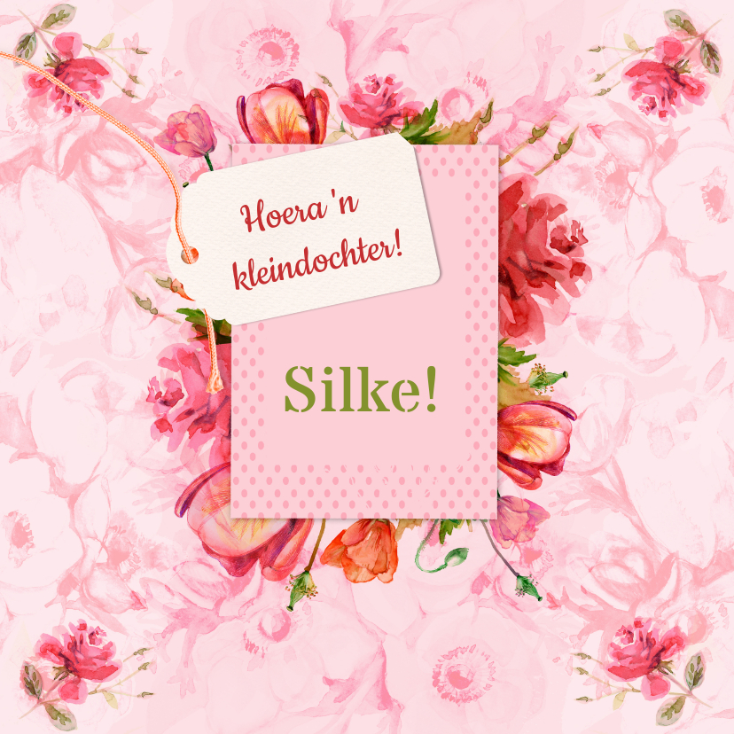 Felicitatiekaarten - Gefeliciteerd met Silke!