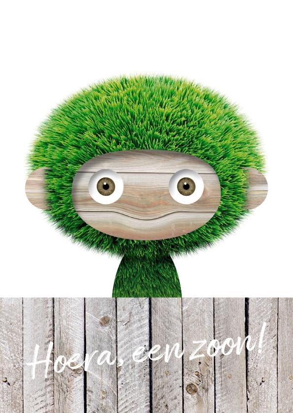 Felicitatiekaarten - Gras aapje achter schutting