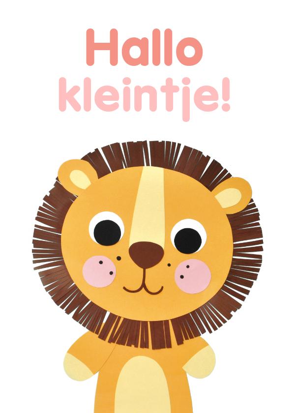 Felicitatiekaarten - Hallo kleintje leeuw