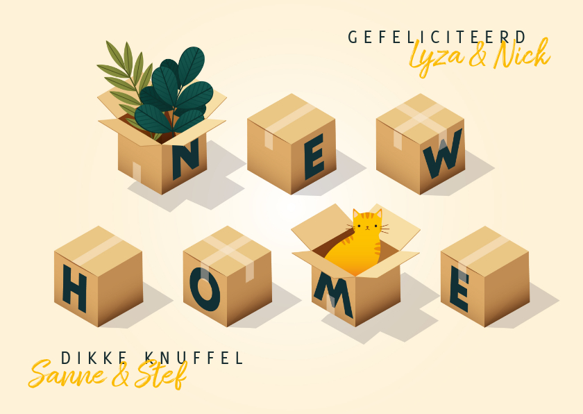 Felicitatiekaarten - Hippe felicitatiekaart 'new home' met dozen, planten en kat