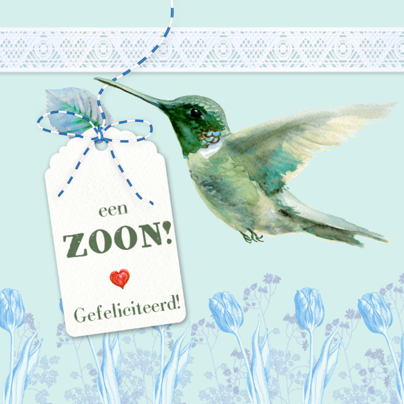 Felicitatiekaarten - Kolibrie geboorte felicitatie