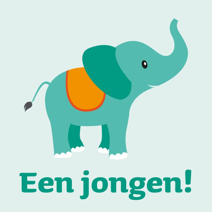 Felicitatiekaarten - olifant Een jongen