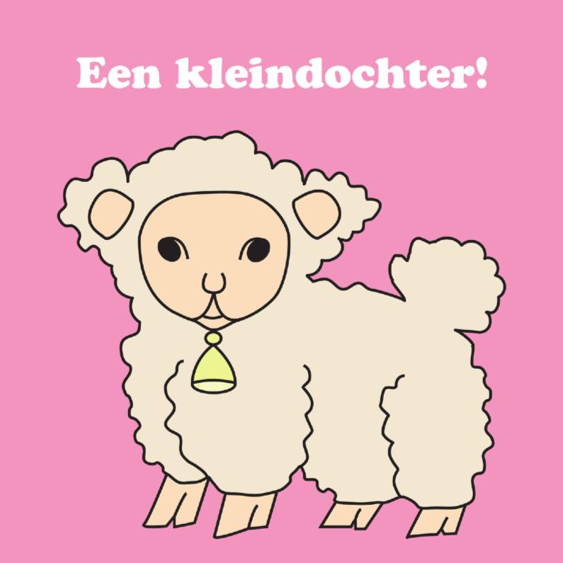 Felicitatiekaarten - Roze lammetje kleindochter