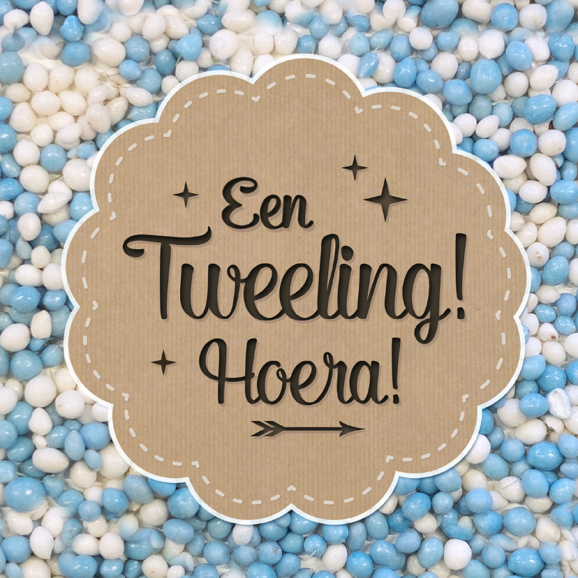 Felicitatiekaarten - Tweeling 2 jongens muisjes blauw