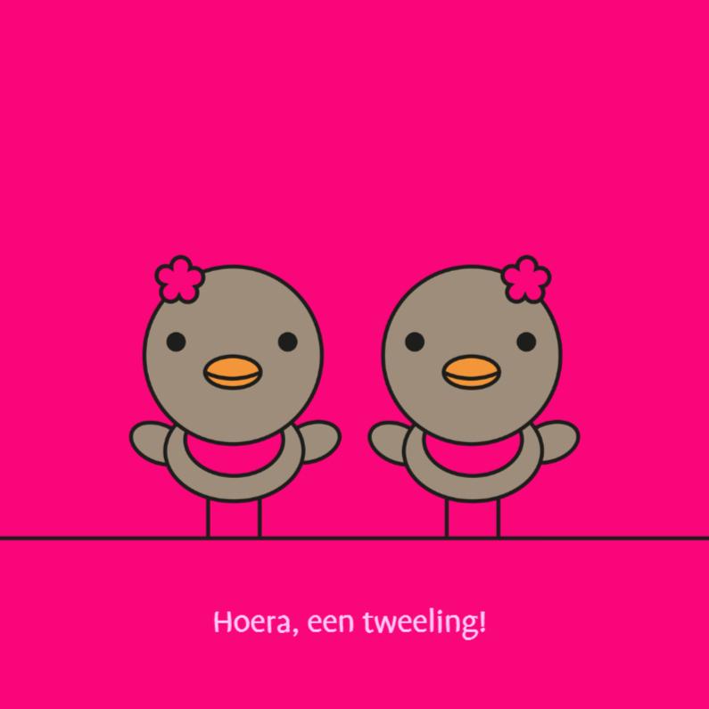 Felicitatiekaarten - Tweeling roodborstjes