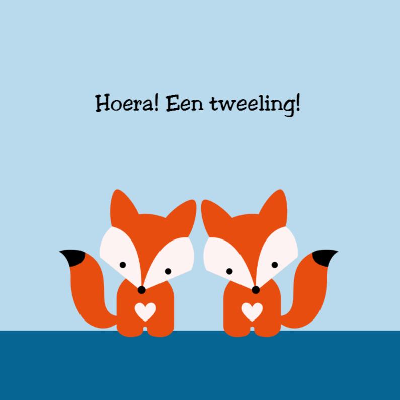 Felicitatiekaarten - Tweeling vosjes, jongens