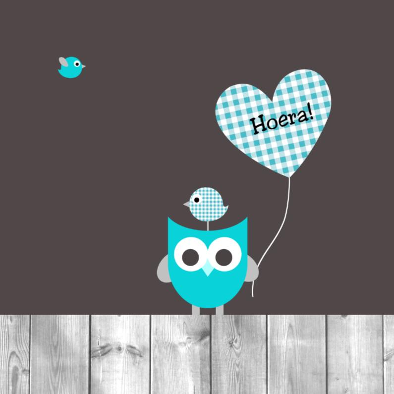 Felicitatiekaarten - Uiltje, ballon en vogeltjes