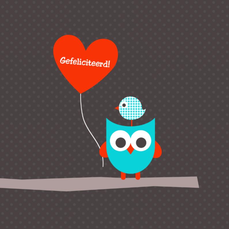 Felicitatiekaarten - Uiltje met ballon