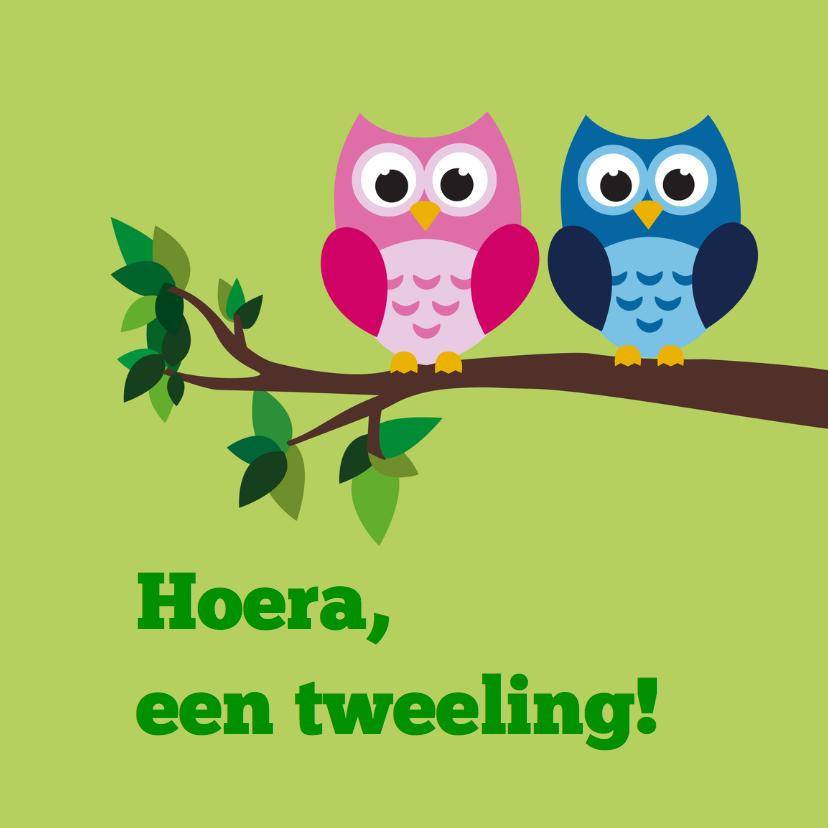 Felicitatiekaarten - uiltjes felicitatie tweeling