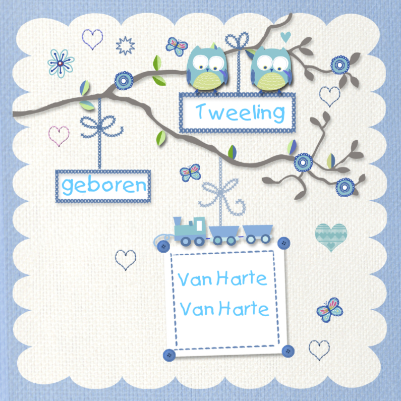 Felicitatiekaarten - Van Harte tweeling uiltje jongen