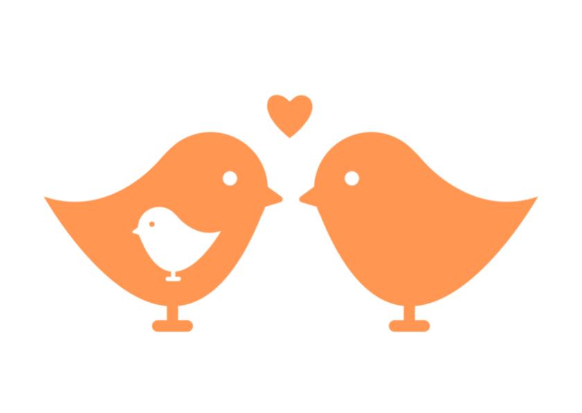 Felicitatiekaarten - Zwanger Vogeltjes