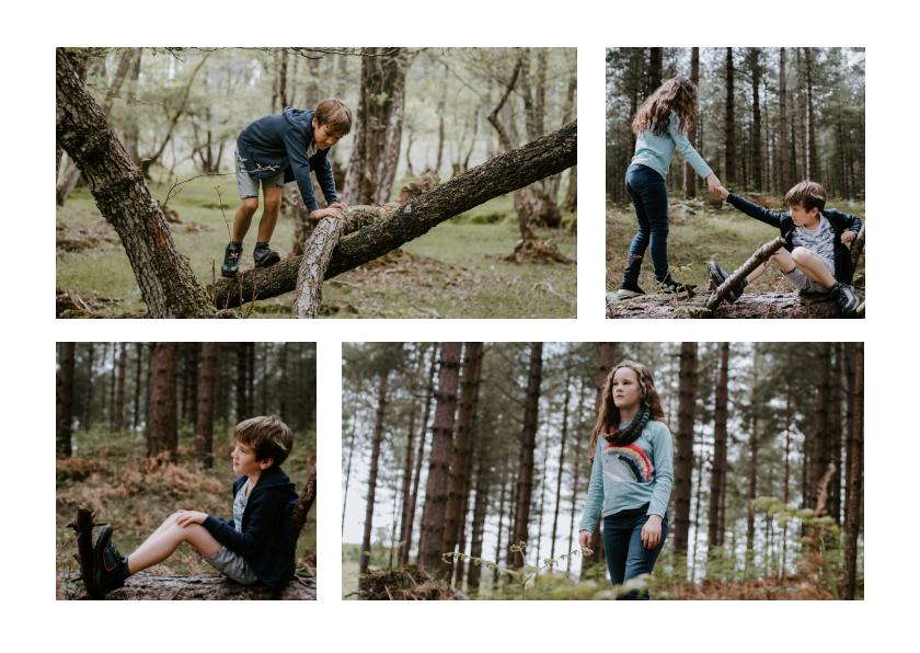 Fotokaarten - Collage met 4 foto's