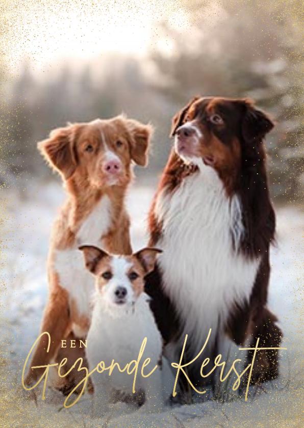 Fotokaarten - Stijlvolle zakelijke fotokaart gezonde kerst goudlook honden