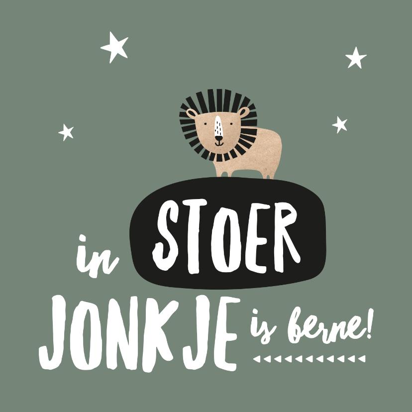 Fryske kaartsjes - Fryske kaart geboorte zoon leeuw