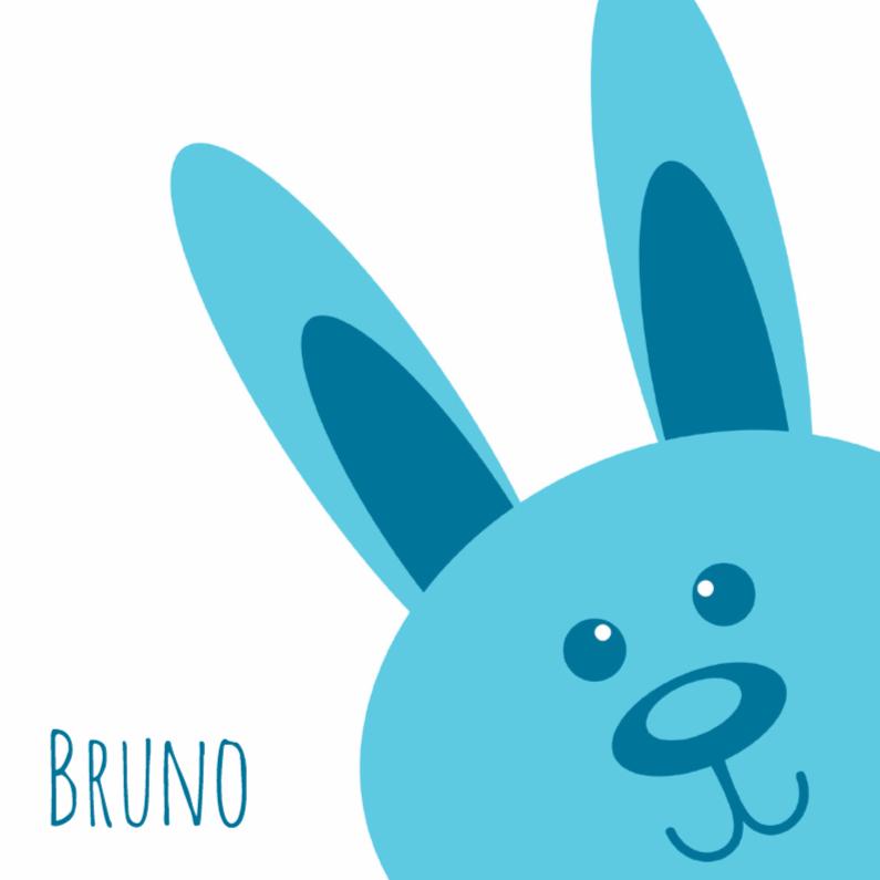 Geboortekaartjes - Aqua konijn geboorte - DH