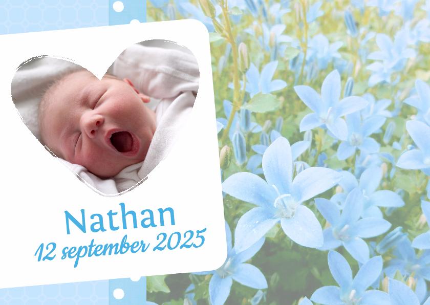 Geboortekaartjes - Bloemenkaart Campanula - BK