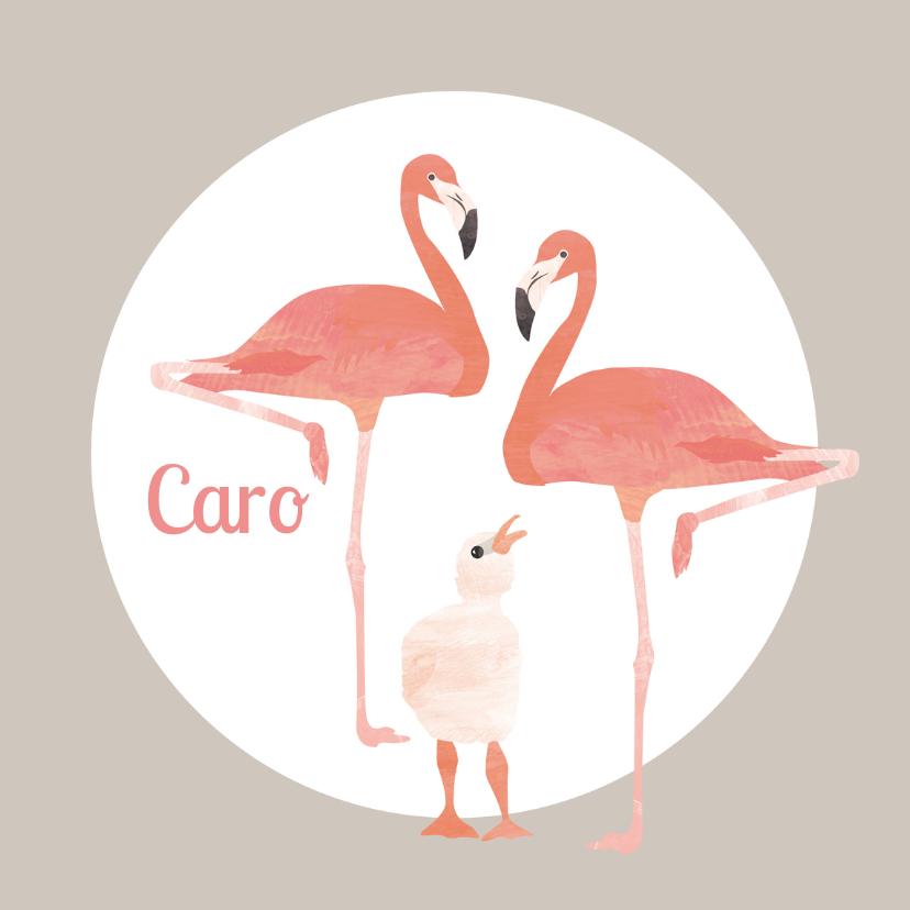 Geboortekaartjes - Flamingo geboortekaartje