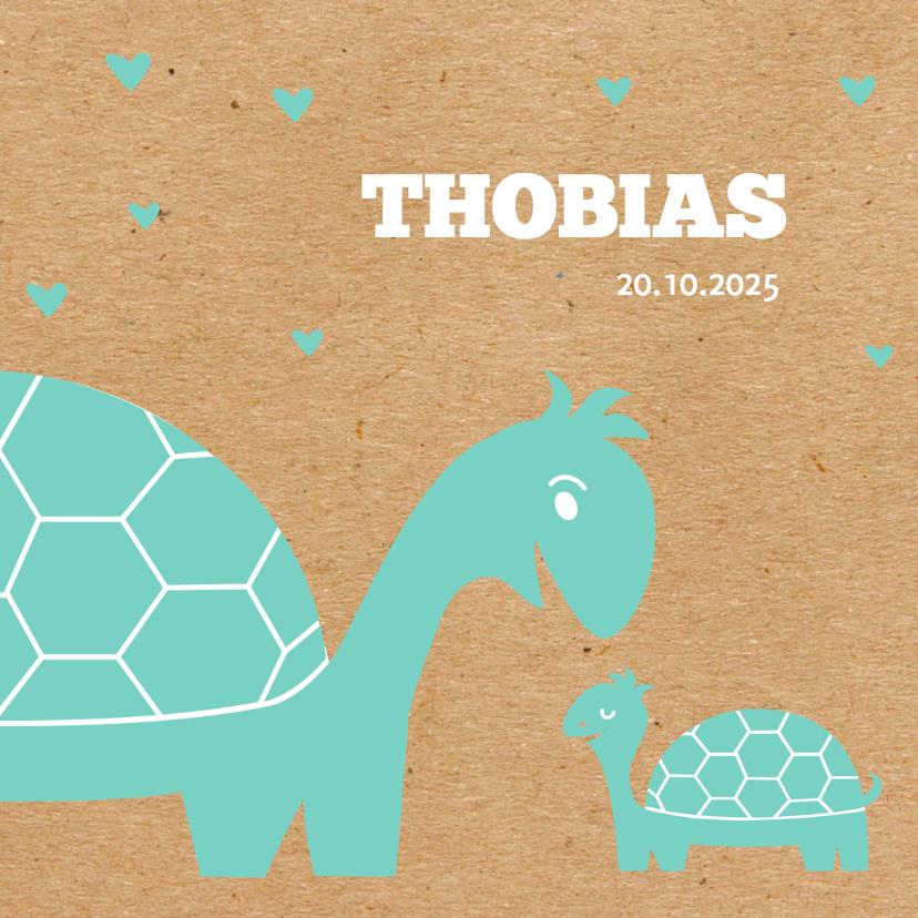 Geboortekaartjes - geboorte blauw kraft schildpadje