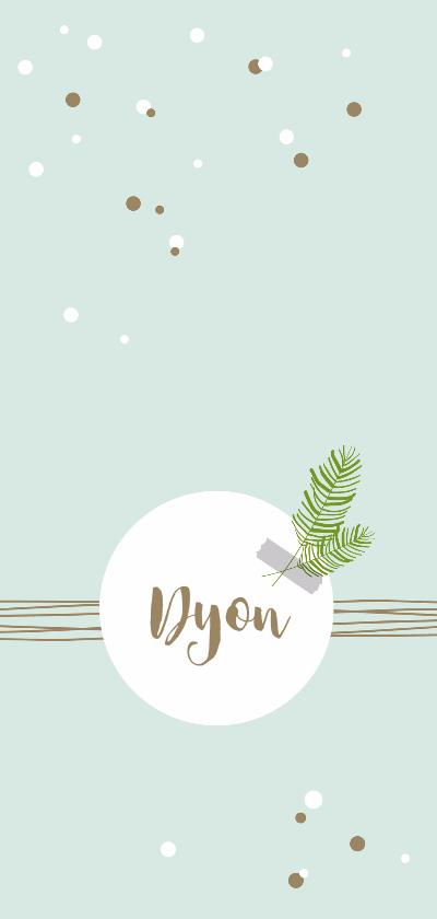 Geboortekaartjes - Geboorte - Confetti, lijnen en takje, jongen