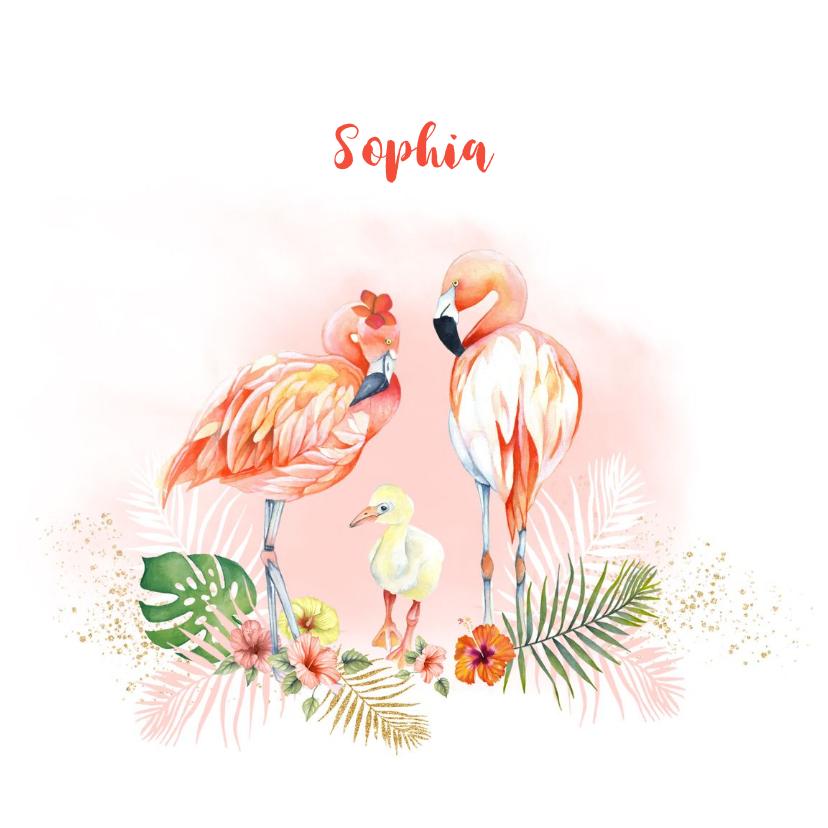 Geboortekaartjes - Geboorte flamingo baby