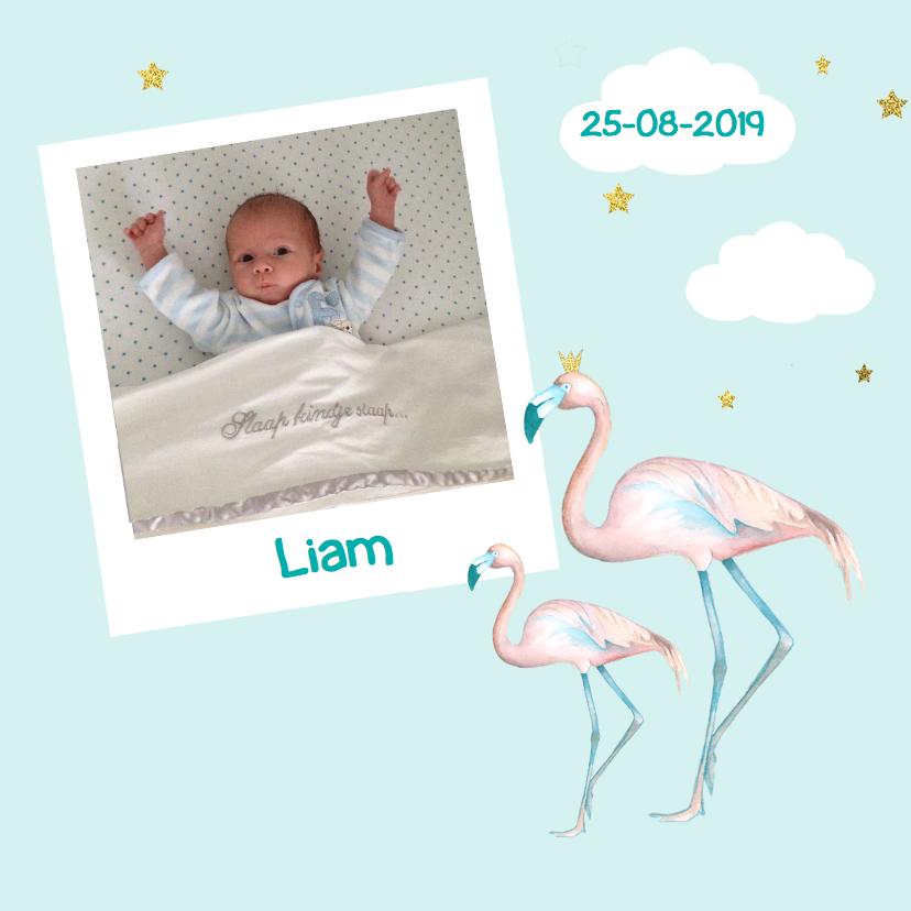 Geboortekaartjes - Geboorte flamingo jongen foto